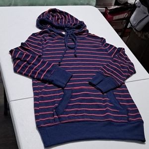 Blue and Pink Striped Hoodie